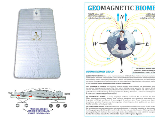 GeomagneticBiomed
